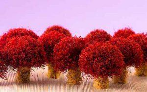 medicinal value of saffron